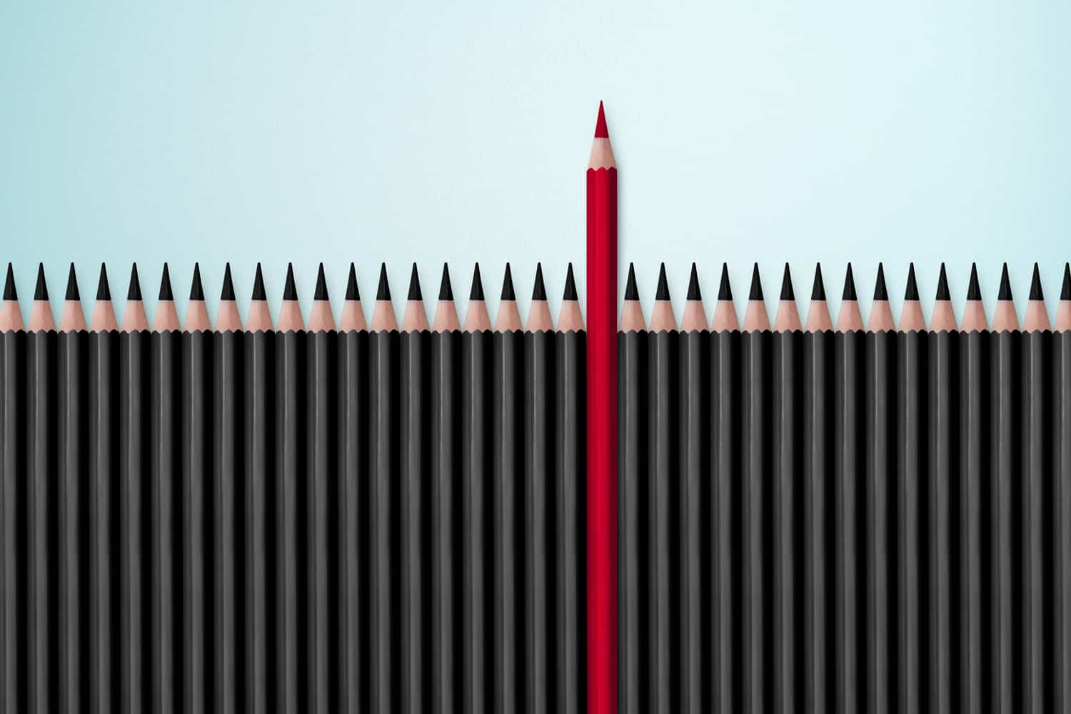 A red pencil stands out among a line of black pencils, ready to handle all types of editing needs.